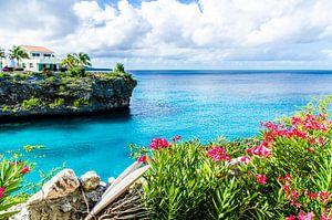 The Colors of Lagun