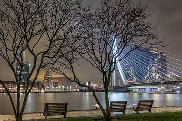 Ein anderer Blick auf die Skyline von Roterdam von Dennisart Fotografie