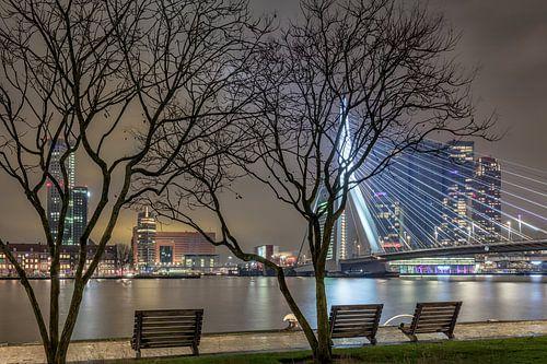 Een andere kijk op de skyline van Roterdam