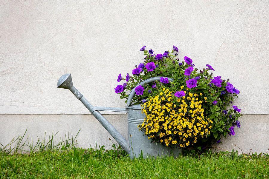 Blumengießkanne von Andreas Müller