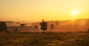 Zonsopkomst boven de Brunssummerheide in Zuid-Limburg