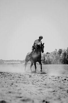 Rennpferd, das in Schwarz-Weiß läuft von Dieuwertje Van der Stoep