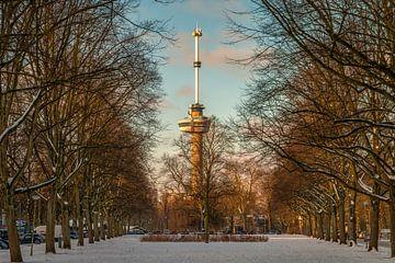 Der Euromast - Winter 6 von Nuance Beeld
