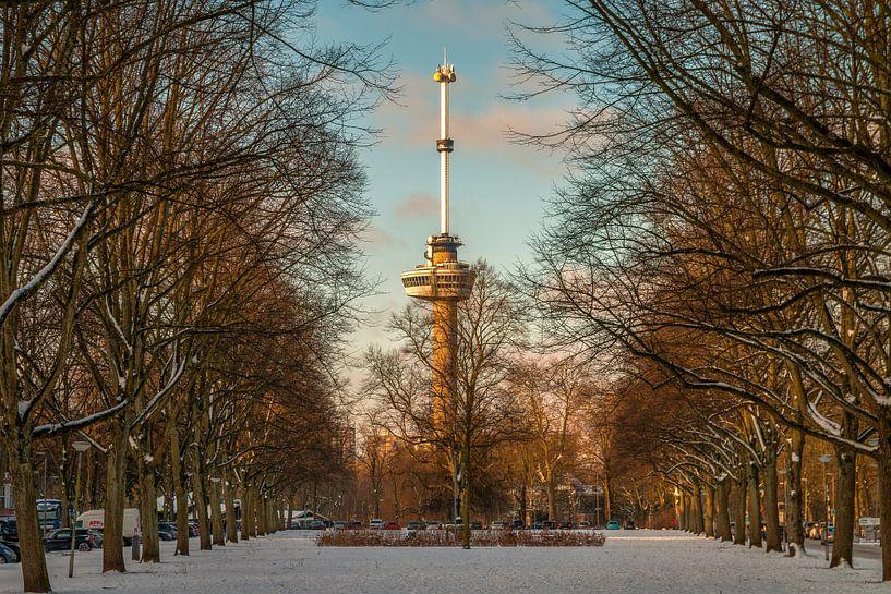 De Euromast - winter 6 van Nuance Beeld