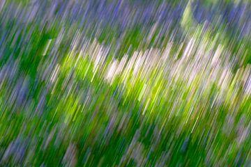 Intentional Camera Movement - 1 van Ronald Mallant
