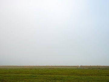 Herfstlandschappen Haar-Zuijlens, Utrecht van Roland de Zeeuw fotografie