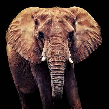 Elephant van Angela Dölling