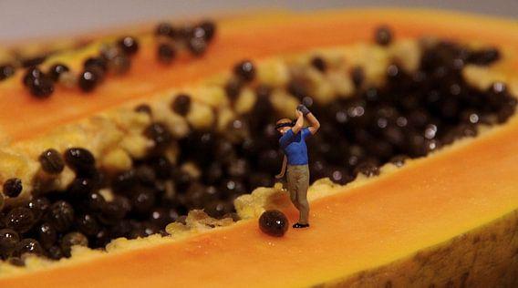 Papaya Open van Ulrike Schopp