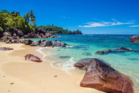 Droomstrand Baie Lazare  - Mahé - Seychellen van Max Steinwald