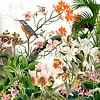 Der Eisvogel bei den Orchideen von christine b-b müller Miniaturansicht