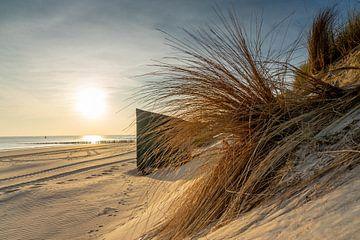 La plage sur Jolanda Bosselaar