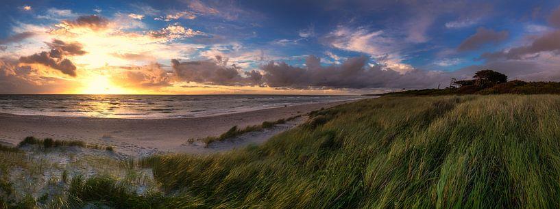 Strand Panorama van Steffen Gierok