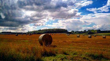 Strohballen auf dem Feld in der Normandie, Frankreich von Deborah Blanc