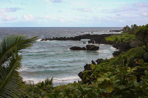 Lavastrand Hawaii van Louise Poortvliet