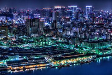 Tokyo, Tomoshi Hara van 1x
