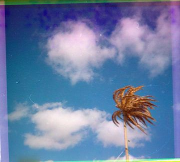 Retro strand 2 van matthijs rouw