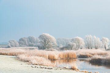Winterlandschap in de IJsseldelta bij Kampen van Sjoerd van der Wal