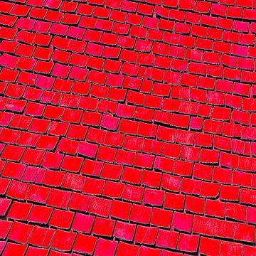 Vierkante uitsnede van een oud Zweeds houten dak sur arjan doornbos