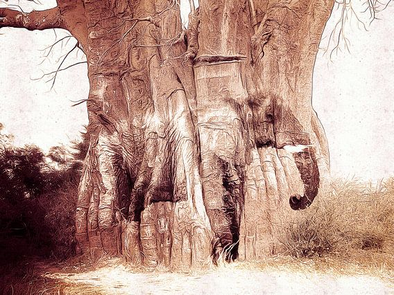 The Baobab tree and the elephant