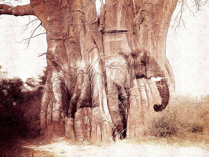 The Baobab tree and the elephant van Nannie van der Wal