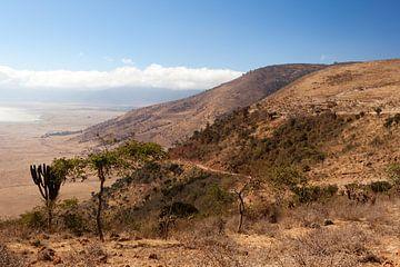 De rand van de Ngorongorokrater in het noorden van Tanzania. van Alida Stuut