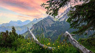 Alpenblick von Thomas Heitz