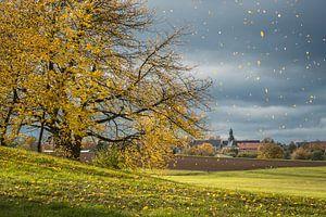 pluie de feuilles d'automne sur Jürgen Schmittdiel Photography