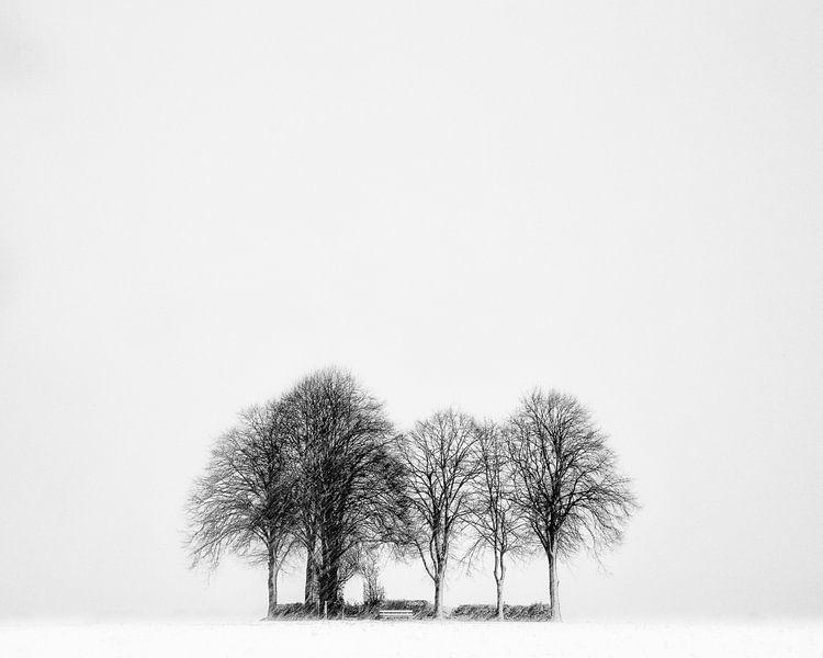 Sneeuw op de Es, Snow on the Es van Tony Ruiter