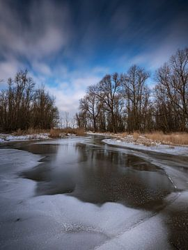 Biesbosch winter landschap van Marcel van Balkom