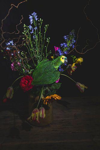 green parrot flowers, amazonepapegaai bloemen