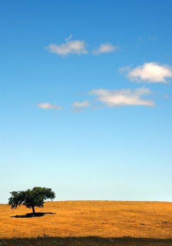 just a tree von Harrie Muis
