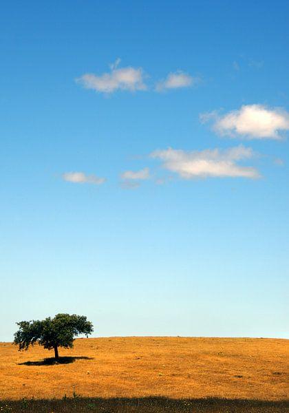 just a tree van Harrie Muis