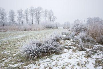 Winter in de Alblasserwaard sur André Hamerpagt