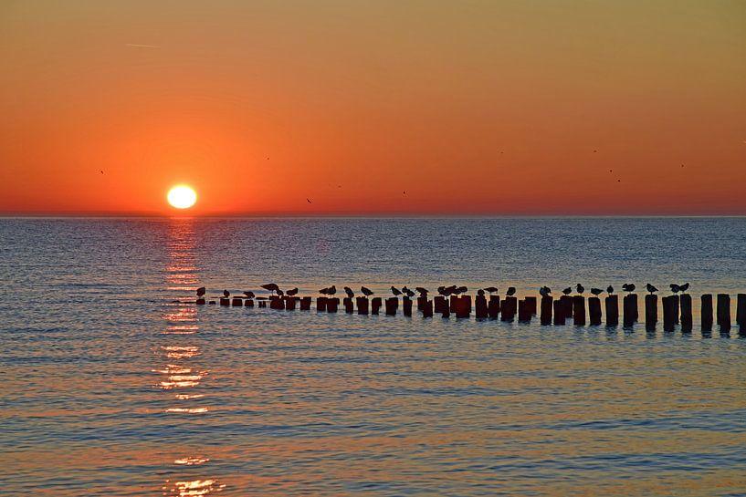 Zoutelande sunset, Glad je suis ici (BLØF) sur Zeeland op Foto