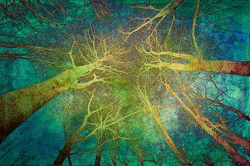 Gruselige wälder von Freddy Hoevers