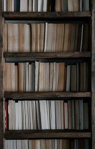 Buchen von Marieke de Koning