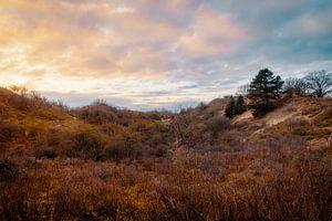 Meijendel-Sonnenuntergang von Paul Poot