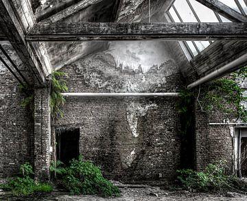 Abandoned Place - Salle de verdure sur Carina Buchspies