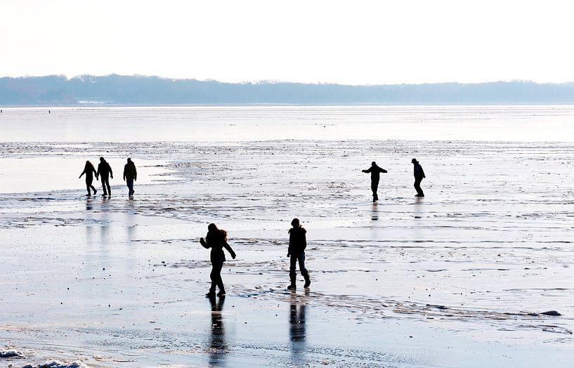 Winter in Nederland met schaatsers op het ijs. van Brian Morgan