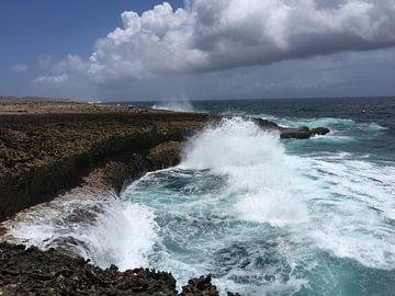 Curacao, ruwe zee van Patsy Van den Broeck