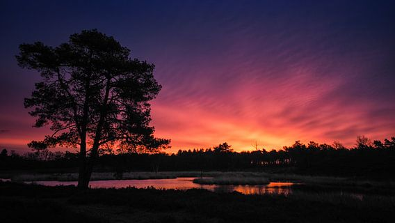 Morning colours (16:9) van Lex Schulte