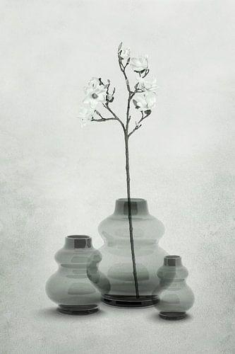 Glazen vazen in transparante grijs-groen tinten