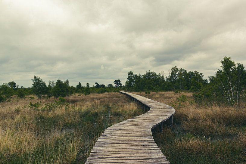 Pont-levis dans le Groote Peel sur MDRN HOME