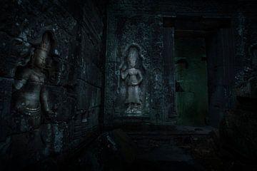 Ta Prohm Tempelcomplex, Cambodja van Robert van Hall