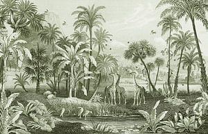 Vintage Dschungel mit Giraffen und Vögeln. Palmen und Farne. von Studio POPPY