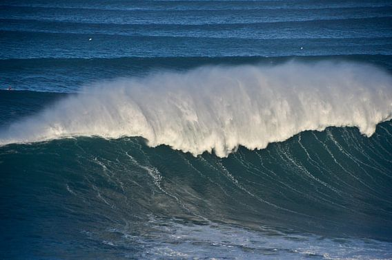 Big wave Nazaré Portugal