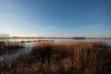Eiland van Maurik von Moetwil en van Dijk - Fotografie