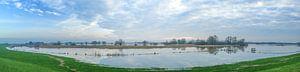 Hoog water in de uiterwaarden van de IJssel van Sjoerd van der Wal