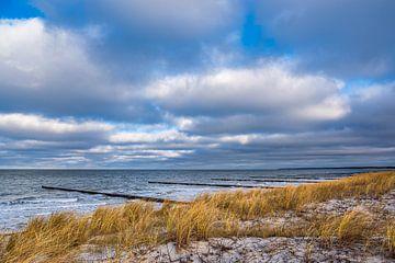 Kribben aan de kust van de Oostzee op Fischland-Darß van Rico Ködder