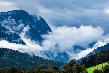 Landschaft mit Bergen und Bäumen im Berchtesgadener Land von Rico Ködder